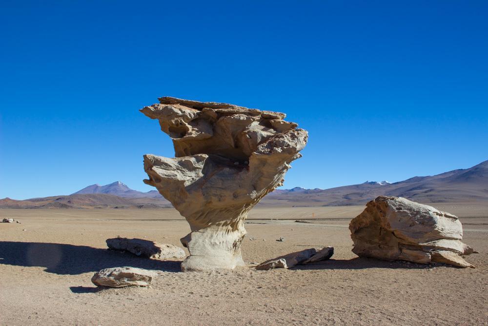Заповедник Авароа, Каменное дерево, Боливия