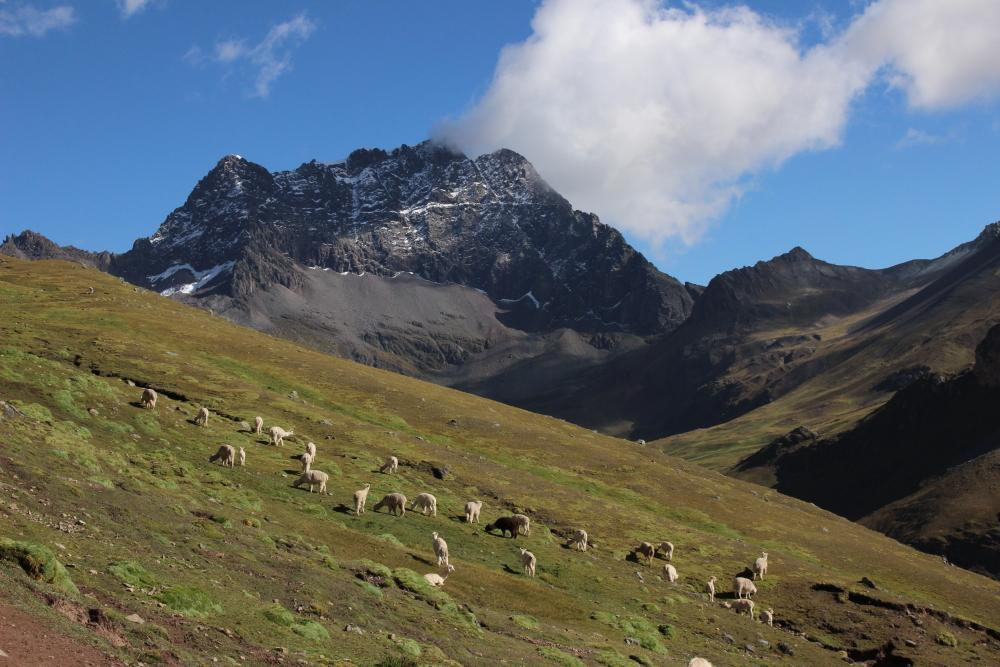 Treking Ausangate from Cusco, 7 days