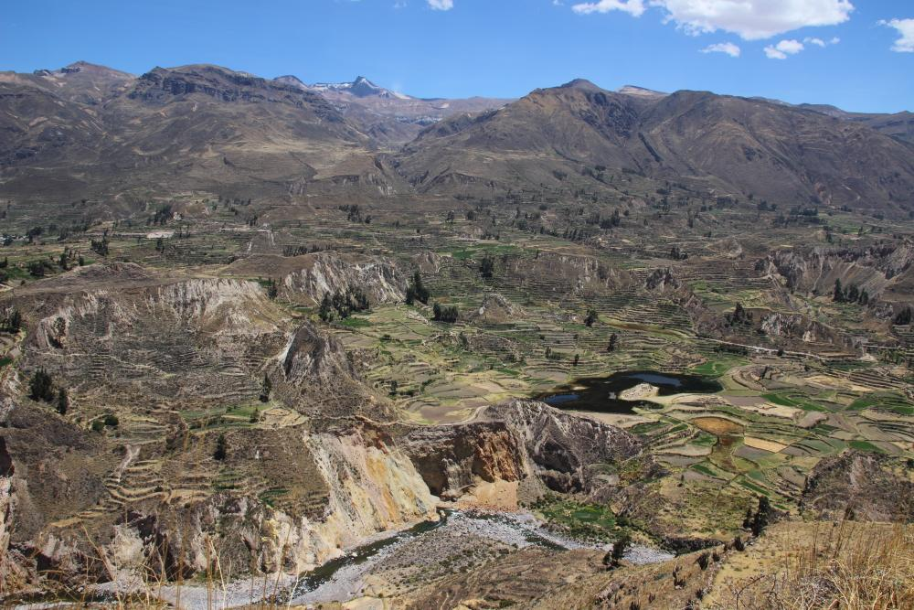 Tour from Puno to Colca Canyon with transfer to Arequipa, 2 days