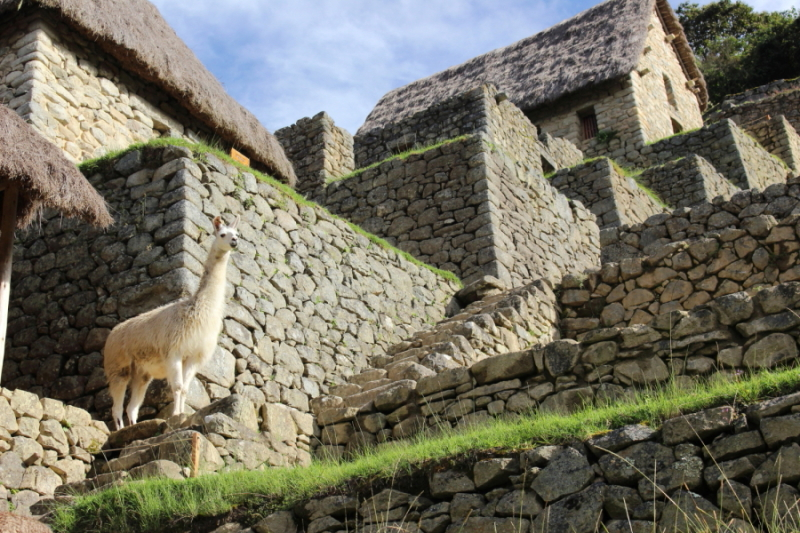 Sacred Valley and Machu Picchu tour from Cusco