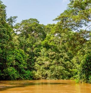"""Andes & Amazon"". 8-day tour to Peru"